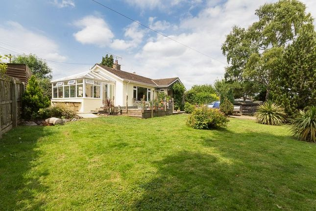 Thumbnail Bungalow for sale in Parade, Chudleigh, Newton Abbot