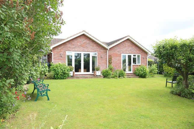 Thumbnail Detached bungalow for sale in Gorsley, 6 Gorsley Gardens, Ross-On-Wye