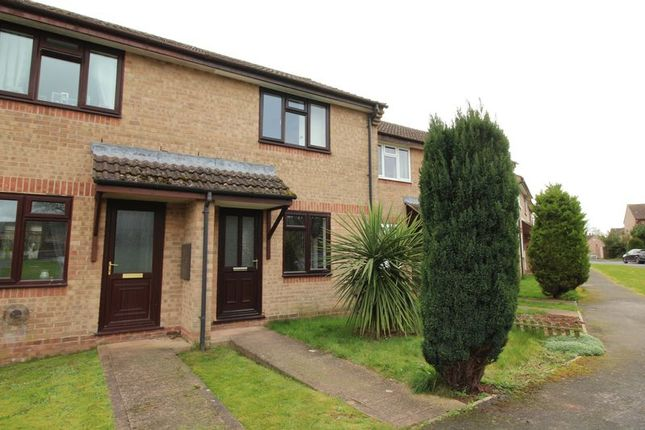 Thumbnail Terraced house to rent in Priory Road, Tiverton