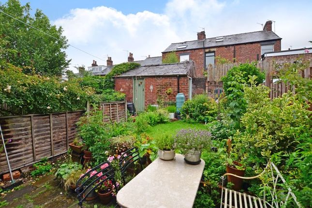 Garden of Ashford Road, Sharrow Vale, Sheffield S11