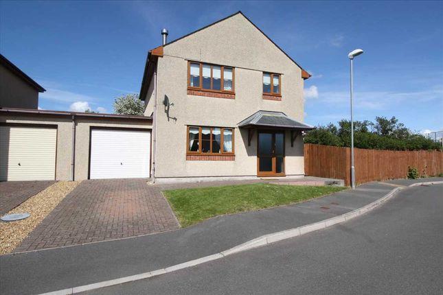 Thumbnail Detached house for sale in Tyn Lon Bach, Newborough, Newborough