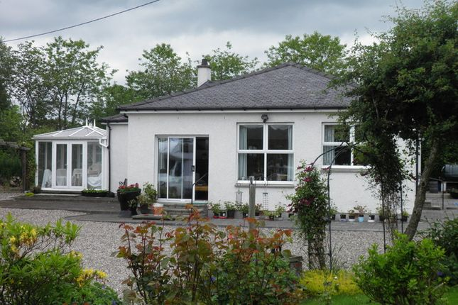 Thumbnail Detached house to rent in Craigielea Cottage Woodlands Road, Rosemount, Blairgowrie