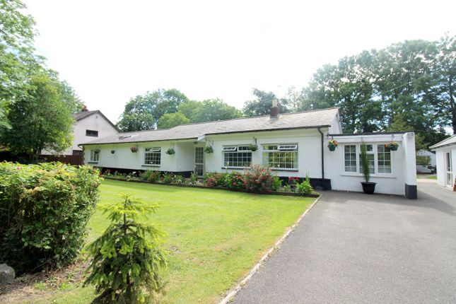Thumbnail Detached bungalow for sale in Redwick, Magor, Caldicot