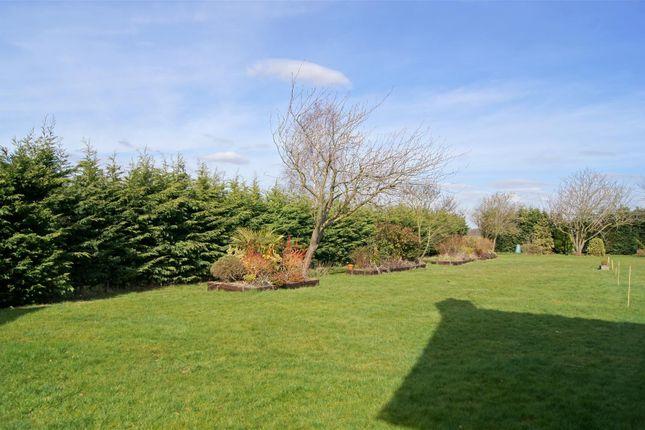 Thumbnail Land for sale in Sandy Lane, Barningham, Bury St. Edmunds