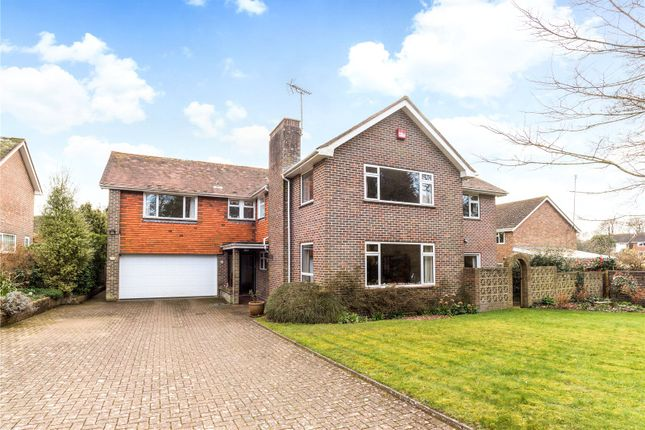 Thumbnail Detached house for sale in Brandy Hole Lane, Chichester, West Sussex