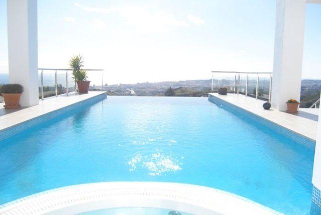 Infinity Pool (2)