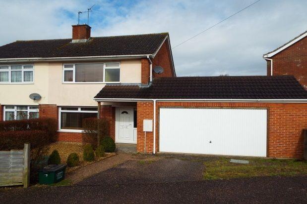 Thumbnail Property to rent in Whitebridges, Honiton