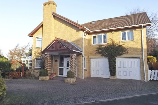 Thumbnail Detached house for sale in Anthony Court, Stanley, Durham