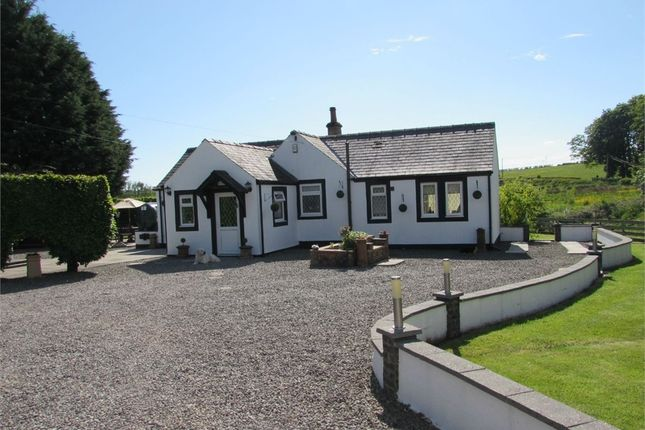 Thumbnail Detached house for sale in Canonbie, Evertown, Canonbie, Dumfries And Galloway