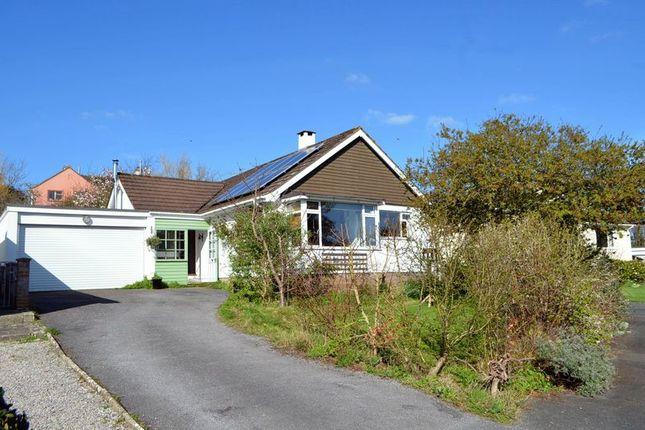 Thumbnail Bungalow for sale in Woodland Close, Staverton, Totnes