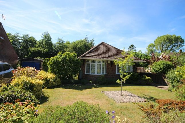 Thumbnail Detached bungalow for sale in Sandy Lane, Belton, Great Yarmouth