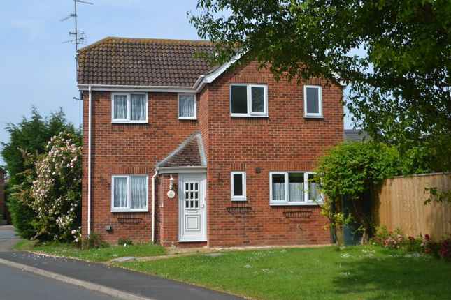 Thumbnail Detached house to rent in Lode Way, Chatteris