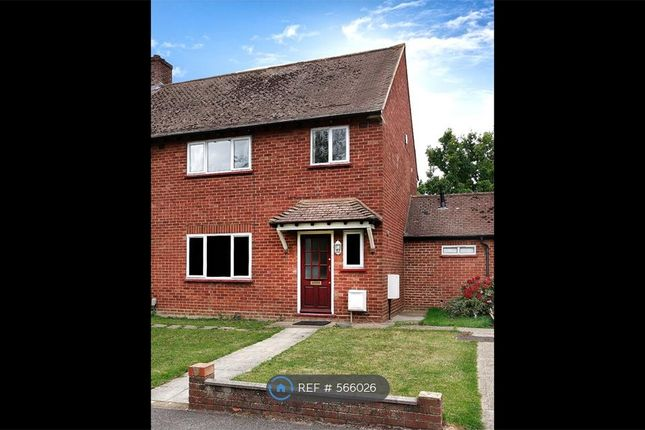 Thumbnail Semi-detached house to rent in Cobbett Road, Guildford