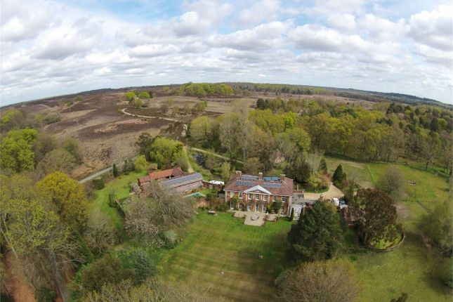 Thumbnail Detached house for sale in Burley Lodge, Burley, Ringwood