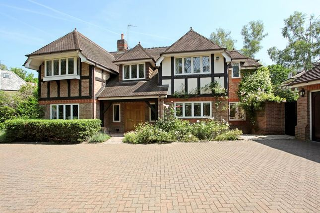 Thumbnail 5 bedroom detached house for sale in Badgers Hill, Wentworth, Virginia Water