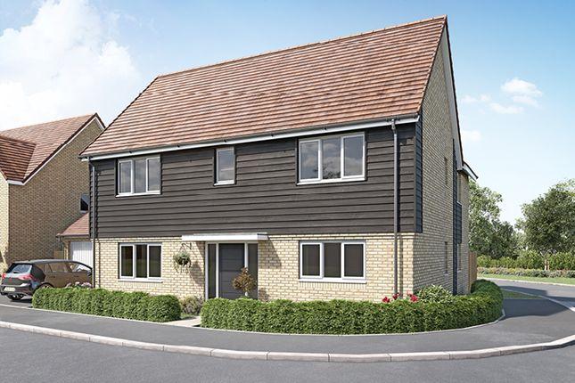 "Thumbnail Property for sale in ""The Roydon"" at Curbridge, Botley, Southampton"