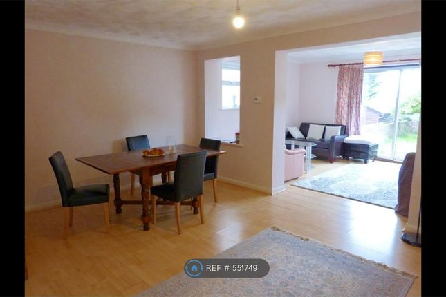 Thumbnail Semi-detached house to rent in Seaview Road, Brighton