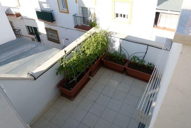 19.Terraza of Spain, Málaga, Marbella