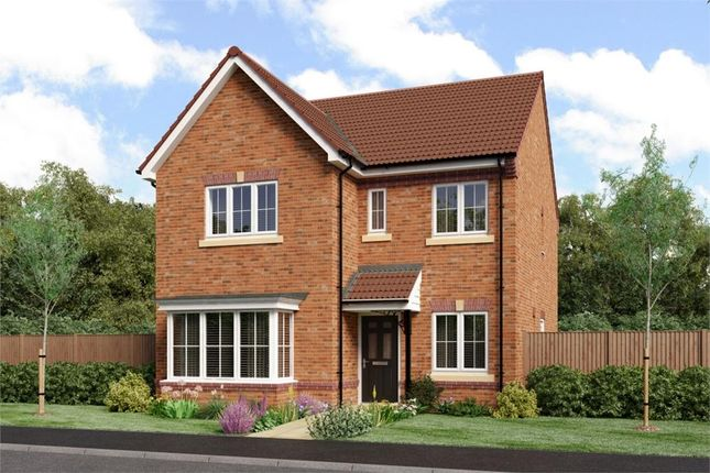 "Thumbnail Detached house for sale in ""Mitford"" at Sophia Drive, Great Sankey, Warrington"