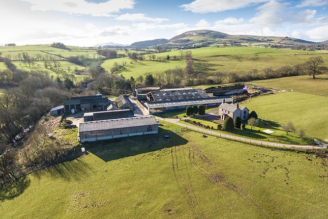 Thumbnail Farm for sale in Hesket Farm, Dacre, Penrith, Cumbria