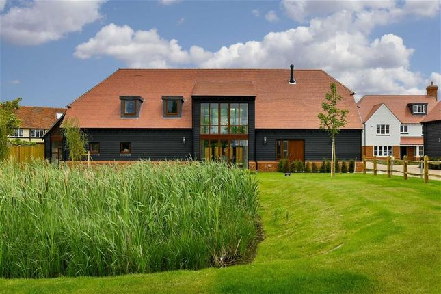 Thumbnail Detached house for sale in The Drove, Chestfield, Kent