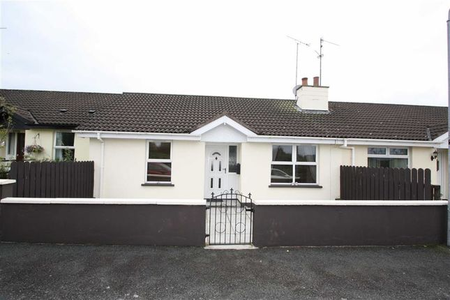 Thumbnail Semi-detached bungalow to rent in Moybrick Grove, Dromara, Down