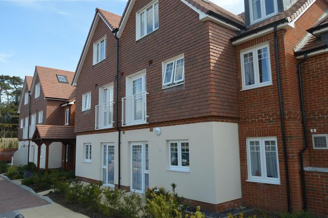 Thumbnail Flat to rent in Little Common Road, Bexhill-On-Sea