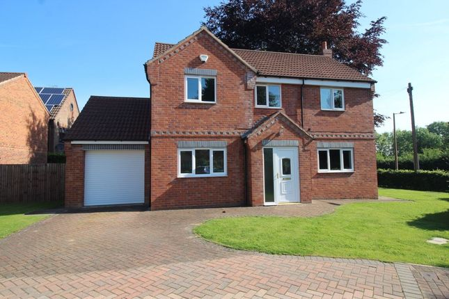 Thumbnail Detached house for sale in Travis Close, Hatfield, Doncaster