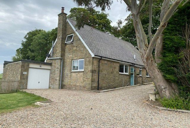 Thumbnail Detached house to rent in Tranwell, Morpeth, Northumberland