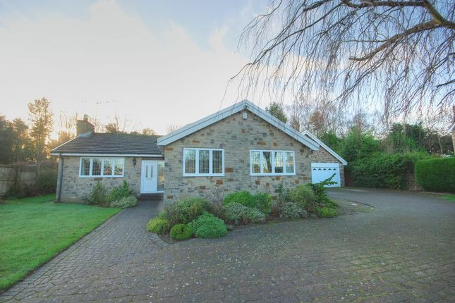 Thumbnail Detached bungalow for sale in Thornlea, Hepscott, Morpeth