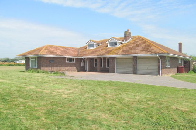 Thumbnail Detached bungalow to rent in Cakeham Road, West Wittering, Chichester
