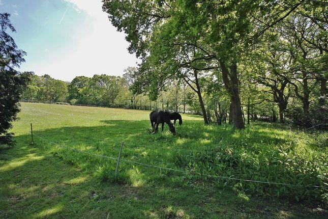 Photo 7 of Spear Hill, Ashington, Pulborough RH20
