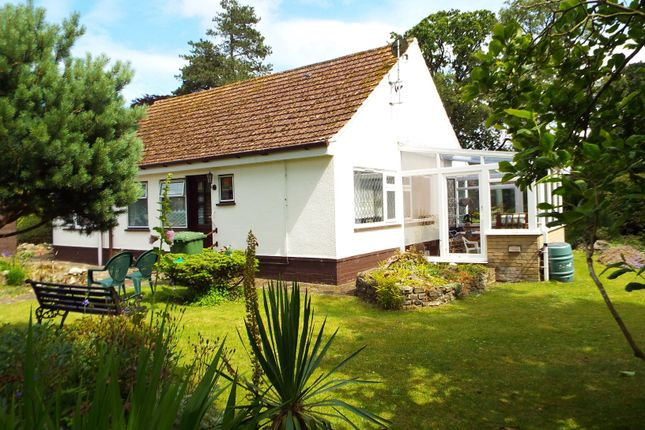 Thumbnail Detached bungalow for sale in Shoemakers Lane, Swaffham