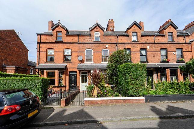 Thumbnail Terraced house for sale in Oakland Avenue, Belfast