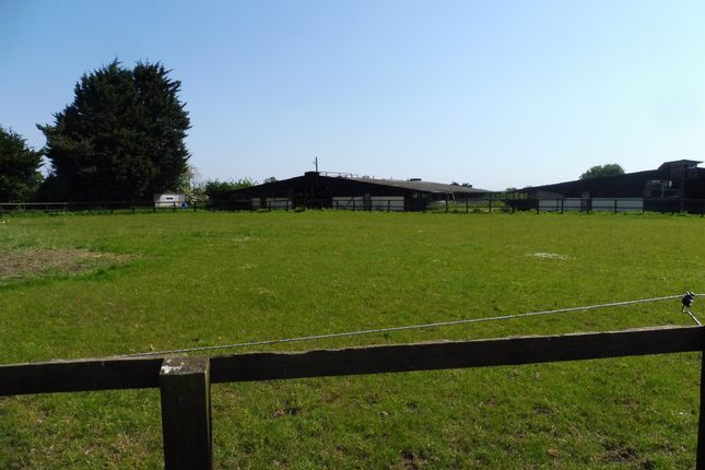 Thumbnail Land for sale in Attleborough Road, Deopham, Wymondham