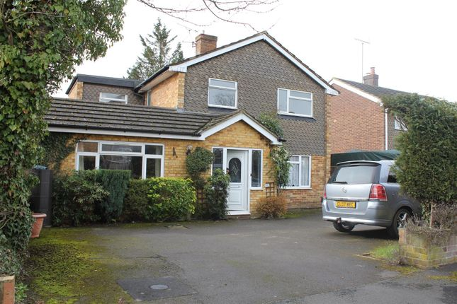 Thumbnail Detached house to rent in Lees Close, Maidenhead