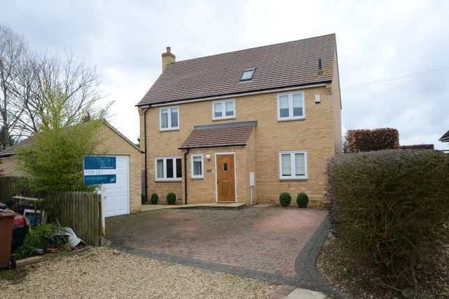 Thumbnail Detached house to rent in Maffit Road, Ailsworth, Peterborough
