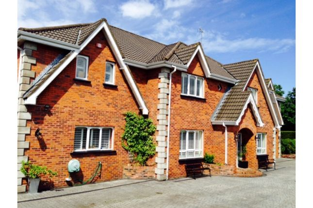 Thumbnail Detached house for sale in Millgrove Park, Derry / Londonderry