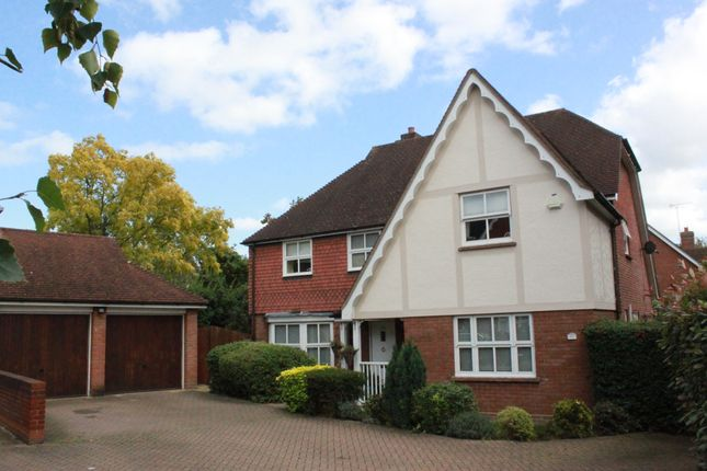 Thumbnail Detached house for sale in Harts Grove, Woodford Green