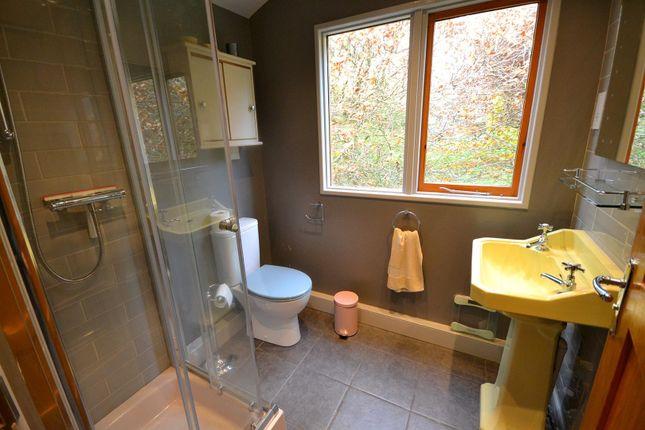 Cabin Shower Room