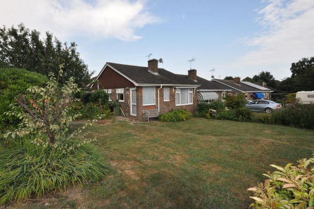 Thumbnail Semi-detached bungalow to rent in Greenacres, Westfield, Hastings