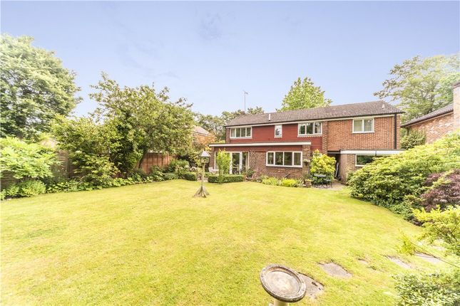Thumbnail Detached house for sale in Bramley Grove, Crowthorne, Berkshire