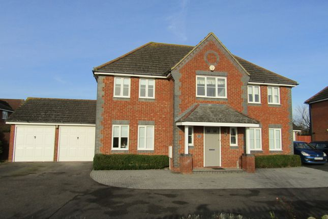 Thumbnail Detached house to rent in Cricketers Way, Chatteris