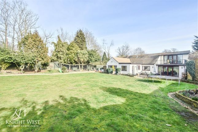 Thumbnail Detached bungalow for sale in Lodge Lane, Langham, Colchester, Essex