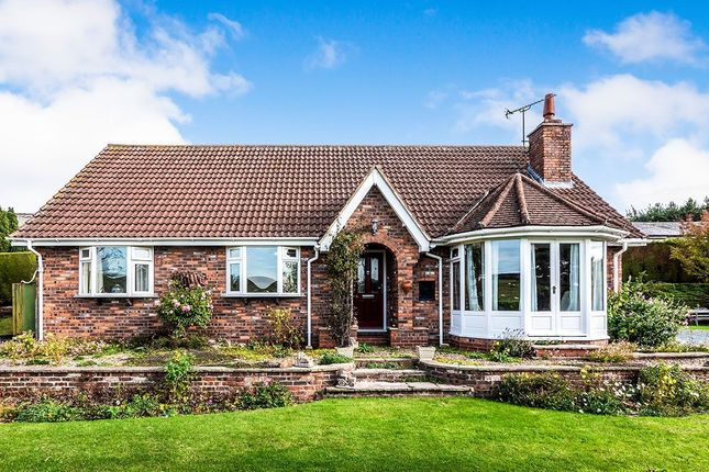 Thumbnail Bungalow to rent in Ruston Parva, Driffield