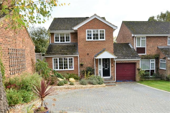 Thumbnail Detached house for sale in Inglewood Avenue, Camberley, Surrey