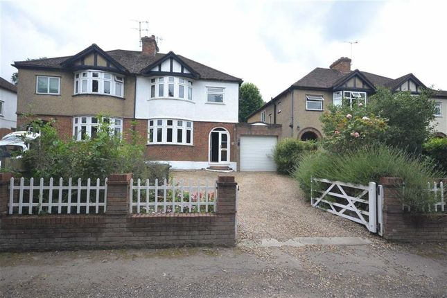 Thumbnail Semi-detached house to rent in Roughdown Avenue, Hemel Hempstead, Hertfordshire