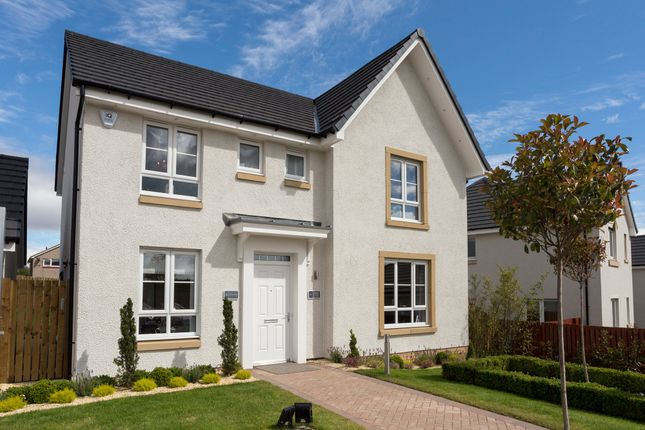 """Thumbnail Detached house for sale in """"Balmoral"""" at Woodlands Grove, Lower Bathville, Armadale, Bathgate"""