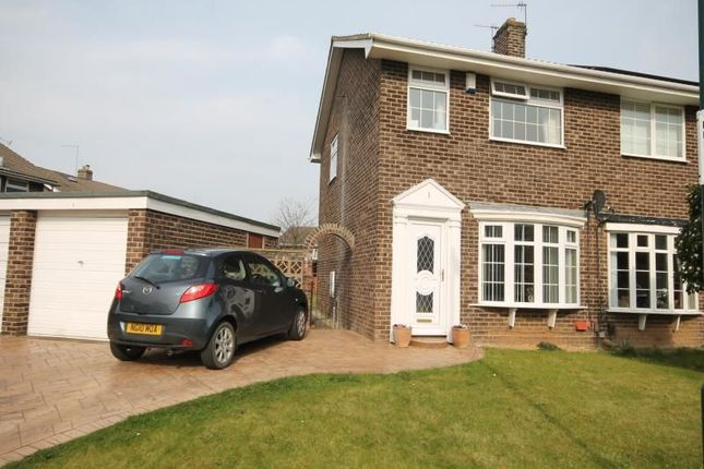 Thumbnail Semi-detached house to rent in Dunston Close, Guisborough
