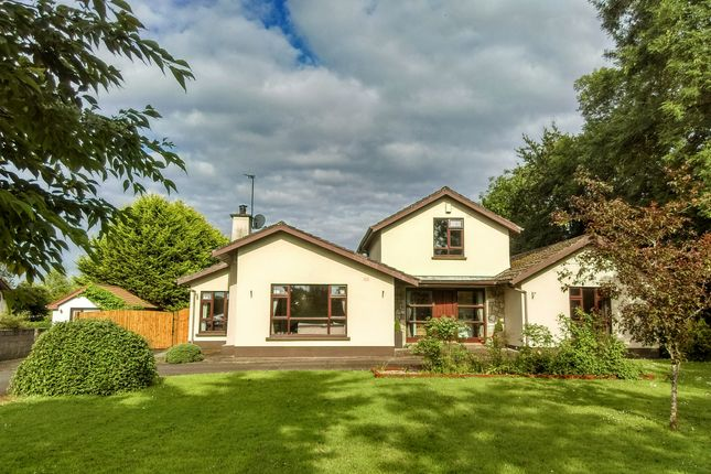 Thumbnail Detached house for sale in Clooncommons, Castleconnell, Limerick